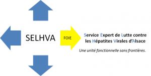 logo SELHVA 2017 HD